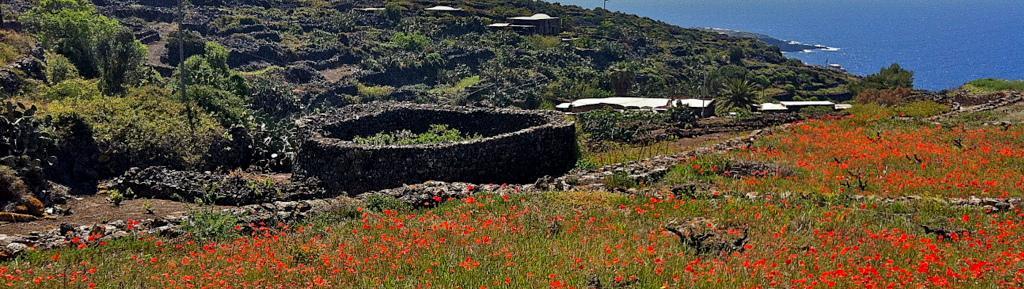 dammusi pantelleria,,,